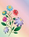 Free Beautiful Bright  Flower Stock Photos - 25558743