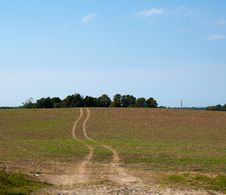 Free Way In Green Field Stock Photo - 25551590