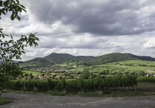 Free Palatinate Wine Country Stock Image - 25553041