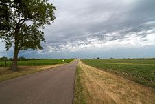 Free Country Road Stock Photos - 25555453