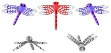 Free Dragonfly Set Royalty Free Stock Photos - 25561538