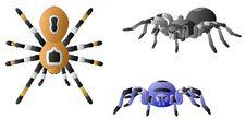 Free Spiders Stock Photo - 25561570