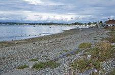 Free Bay, Boats & Birds Stock Photography - 25563702