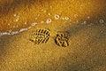 Free Bootprint On The Sand. Stock Photos - 25575223