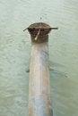 Free Sewage Pipe Stock Photography - 25578402