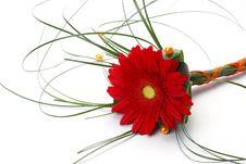 Free Flowers Stock Image - 25576001