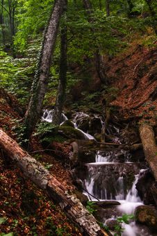 Free Wataerfall In Forest, Crimea, Ukraine Royalty Free Stock Photos - 25580678