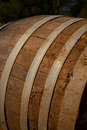 Free Wine Barrel In Cellar Stock Images - 25593234