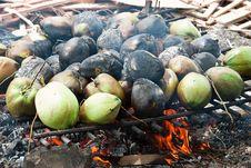 Free Burnt Coconuts Stock Photo - 25590340