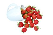 Free A Cup Of Strawberry Isolated On White Stock Images - 25591474