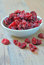 Free Dried Cranberries Stock Photos - 25595363