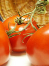 Free Tomatoes And Basket Royalty Free Stock Photography - 2564637