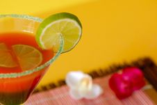 Free Very Great Cocktail With Lemon Stock Photos - 2560703