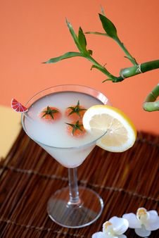 Free Very Great Cocktail With Lemon Stock Photography - 2561052