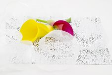 Free Calla Lilies And Ribbons Royalty Free Stock Photo - 2562205