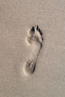 Free Foot Print Royalty Free Stock Image - 2562586