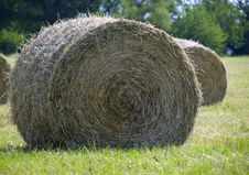 Free Hay Bale In Field Stock Photos - 2563583