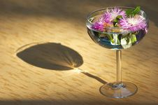 Free Flower Heads Sunken In Water Royalty Free Stock Images - 2563749