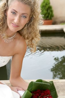Free Bride Pond Royalty Free Stock Photo - 2565475