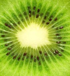 Free Kiwi Texture Stock Images - 2566814