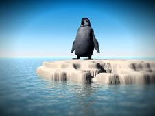 Free Little Lost Penguin 8 Royalty Free Stock Image - 2569506