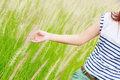 Free Woman&x27;s Hand Touching Green Grass Royalty Free Stock Photos - 25601838