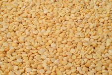 Free Dried Yellow Peas Stock Photography - 25605972