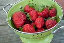 Colander Of Strawberries Stock Photography
