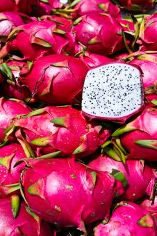Free Exotic Thai Fruit. Dragon Fruit Stock Image - 25624561