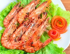 Free Fresh Grilled Shrimps Stock Photos - 25628113