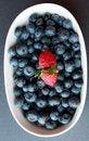 Free Blue Berries Rasberries Stock Photos - 25631873