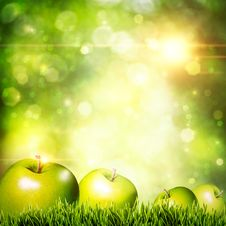 Free Fresh Tasty Apple On The Grass Stock Images - 25634784
