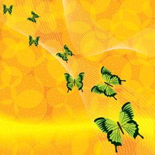 Free Orange Background With Butterfly Stock Images - 25635334