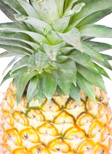Tropical Fruit. Pineapple Stock Images