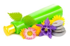 Free Green Cosmetic Bottle With Herbs And Zen Stones Royalty Free Stock Photos - 25639868