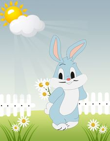 Meadow With Bunny. Royalty Free Stock Image