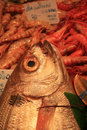 Free Various Sorts Of Fish At The Fish Market Stock Photo - 25663790