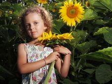 Free Girl With Sunflower Royalty Free Stock Photos - 25661998