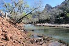 Free River, Trees And Mountains Royalty Free Stock Image - 25666366