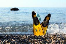 Flippers Near Sea Royalty Free Stock Photo