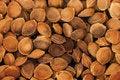 Free Apricot Pits Stock Photography - 25681442