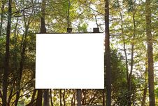 Free Projection Board In The Woods Stock Images - 25690944