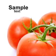 Free Tomatoes Royalty Free Stock Image - 25699676