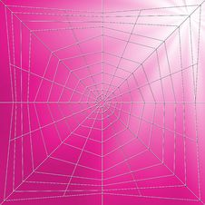 Free Spiderweb Illustration Royalty Free Stock Images - 2571859