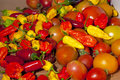 Free Assorted Peppers And Tomatoes On A Table Royalty Free Stock Photos - 25709758