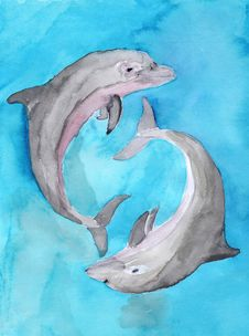 Free Two Dolphins Stock Photos - 25705903