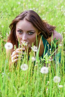 Beautiful Woman With Dandelions Stock Photos