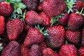 Free Strawberry Stock Photo - 25716780