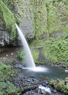 Pony Tail Falls Oregon Royalty Free Stock Image