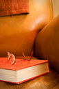 Free Leather Armchair And Book Royalty Free Stock Photos - 25725488